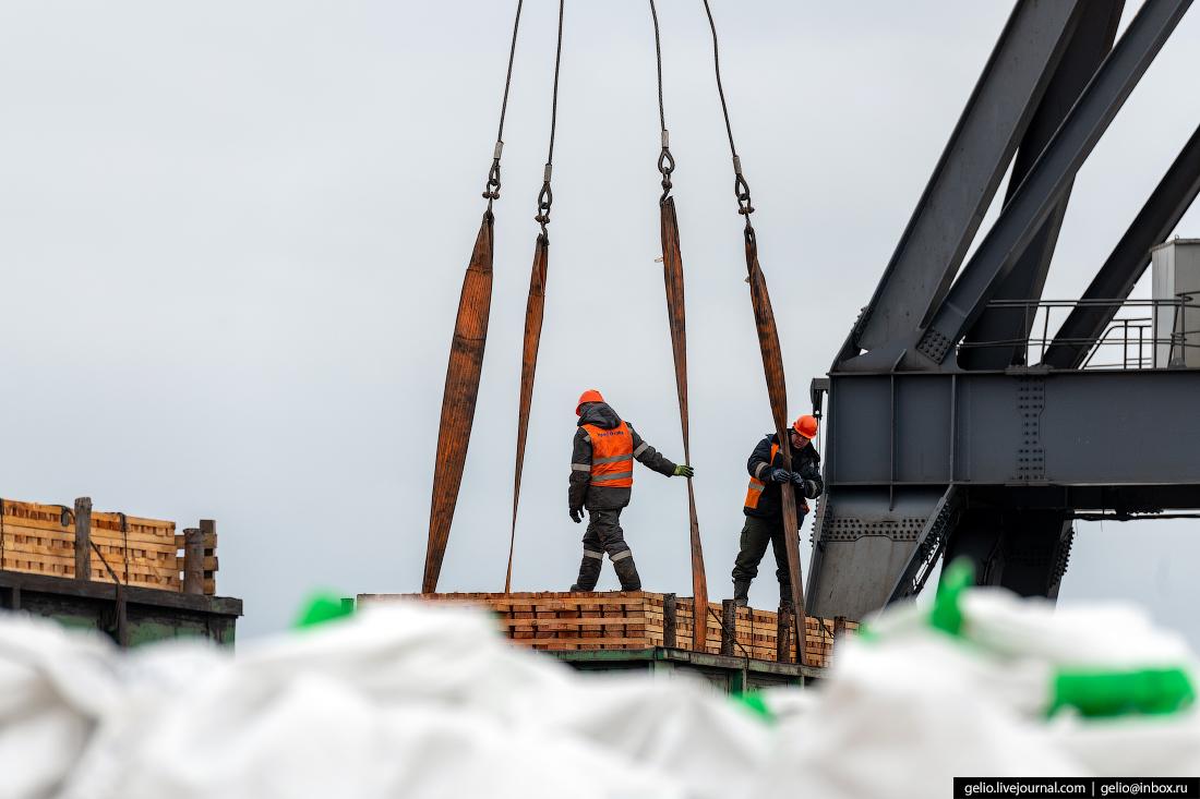 Архангельский морской торговый порт экономия