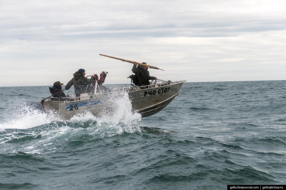 Китовая охота Чукотка лорино