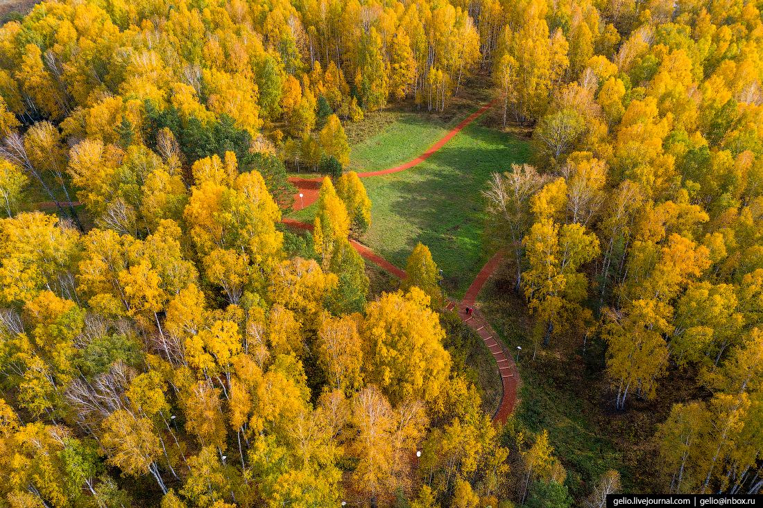 Наукоград Кольцово парк тропа здоровья