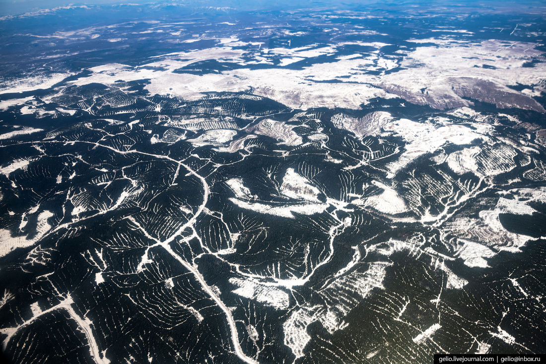 Вырубка лесов из окна самолёта, из иллюминатора