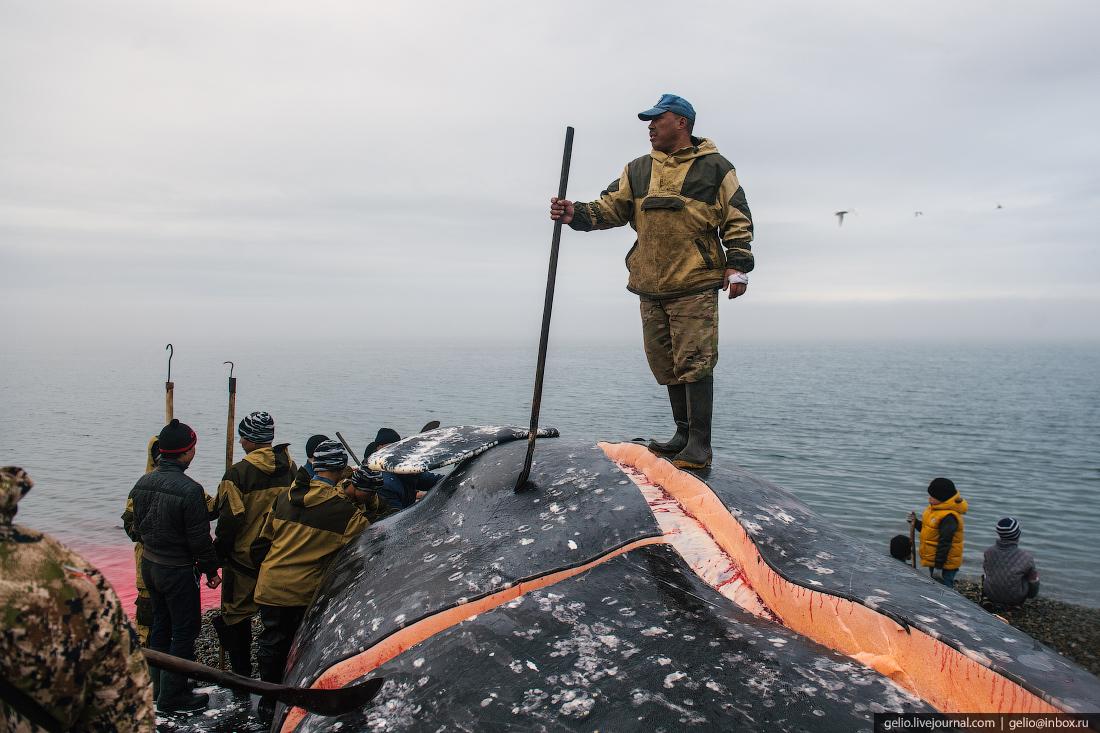 уэлен, самый восточный населенный пункт, чукотка, китобои